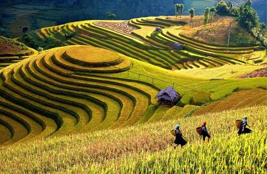Tour Sapa - Welcome Vietnam Tours